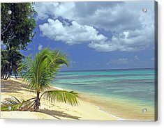 A Secluded Beach In Barbados Acrylic Print by Willie Harper