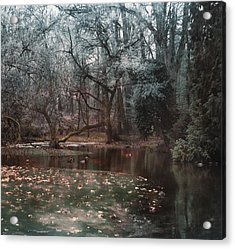 A Secret Place Under - 2 Acrylic Print by Akos Kozari