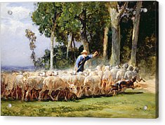 A Shepherd With A Flock Of Sheep Acrylic Print by Charles Emile Jacques