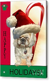 Acrylic Print featuring the digital art A Shih Tzu's Happy Holidays Greeting by Polly Peacock