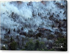 Acrylic Print featuring the photograph A Smoky Slope On White Draw Fire by Bill Gabbert