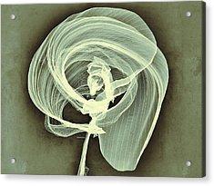 A Smooth Awakening Acrylic Print by Guillermo De Llera
