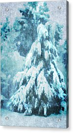 A Snow Tree Acrylic Print by ARTography by Pamela Smale Williams