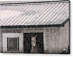 Acrylic Print featuring the photograph A Snowfall At The Stable by Bruce Patrick Smith