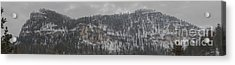 A Snowy Day In Spearfish Canyon Of South Dakota Acrylic Print