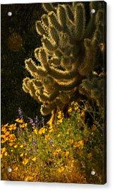A Southwestern Spring  Acrylic Print