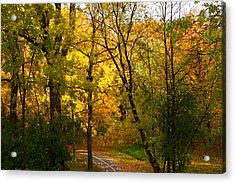 A Special Road Acrylic Print by Jocelyne Choquette
