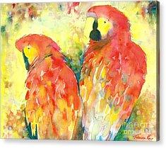 A Splash Of Crimson Acrylic Print