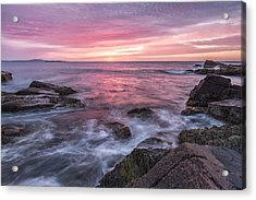 A Splash Of Orange Acrylic Print by Jon Glaser