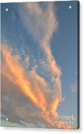 A Splash Of Peach Acrylic Print
