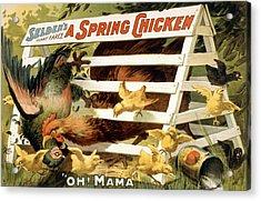 A Spring Chicken Acrylic Print