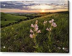 A Spring Sunset In The Flint Hills Acrylic Print