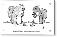A Squirrel Couple Exchange Gifts Of An Acorn Acrylic Print