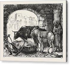 A Stable At Bethlehem Acrylic Print