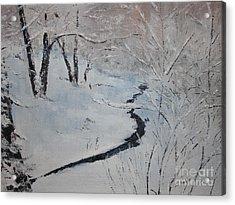A Stream In The Woods Acrylic Print by Steve Knapp