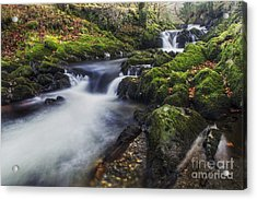 A Stream Of Snowdon Acrylic Print