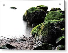 A Study In Green Acrylic Print by JC Findley