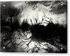 A Symphony Of Light And Shadows Acrylic Print
