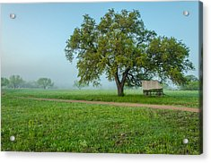 A Texas Morning Acrylic Print by Jeffrey W Spencer