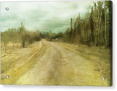 A Textured Pictorialist Photograph Of A Acrylic Print by Roberta Murray