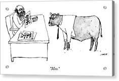 A Therapist Shows A Cow Acrylic Print