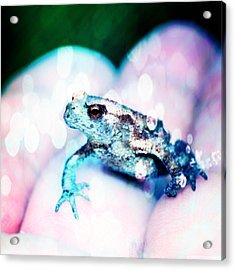 A Tiny Frog Acrylic Print
