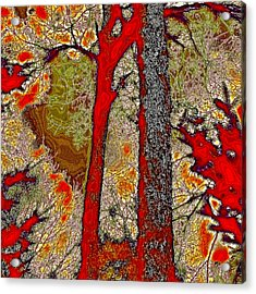 A Touch Of Autumn Abstract V Acrylic Print by David Patterson