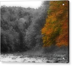 A Touch Of Autumn Colors Acrylic Print by Smilin Eyes  Treasures