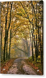 A Touch Of Gold Acrylic Print