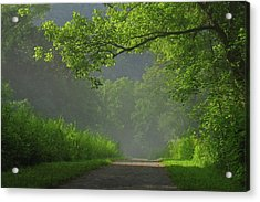 A Touch Of Green Acrylic Print by Douglas Stucky
