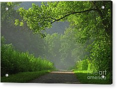 A Touch Of Green II Acrylic Print by Douglas Stucky