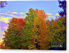 Acrylic Print featuring the photograph A Touch Of Neon by Judy Wolinsky