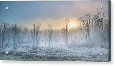 A Touch Of Winter Acrylic Print by Burger Jochen