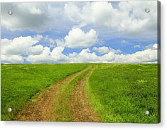 A Trail To The Horizon Acrylic Print