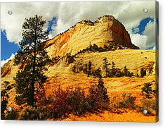 A Tree And Orange Hill Acrylic Print by Jeff Swan