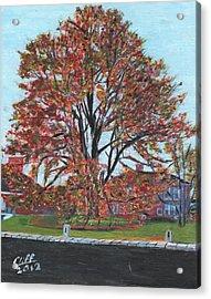 A Tree In Sherborn Acrylic Print