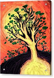 A Tree Is Born Acrylic Print by David Condry