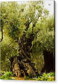 A Treesome Acrylic Print