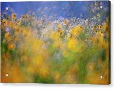 A Tribute To Monet Acrylic Print
