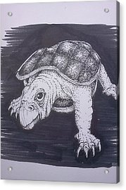 A Turtle Named Puppy Acrylic Print