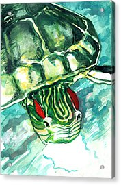 A Turtle Who Likes To Eat Fish Acrylic Print