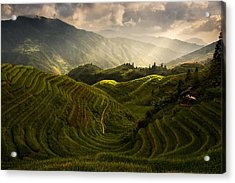 A Tuscan Feel In China Acrylic Print by Max Witjes