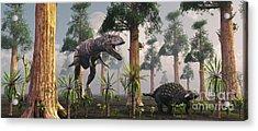 A Tyrannosaurus Rex Tracking Acrylic Print