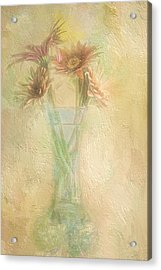 A Vase Of Gerbera Daisies In The Sun Acrylic Print by Diane Schuster