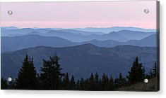 A View From Timberline Acrylic Print