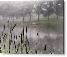 Acrylic Print featuring the photograph A View In The Mist by Bruce Patrick Smith