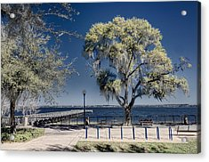 A View Of Lake Minneola Acrylic Print
