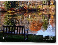 A View Of Wonder Acrylic Print