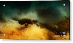 A Walk In The Clouds Acrylic Print by Shevon Johnson