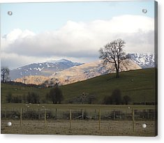 Acrylic Print featuring the photograph A Walk In The Countryside In Lake District England by Tiffany Erdman